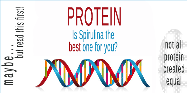 Spirulina – the Ultimate Ocean Protein